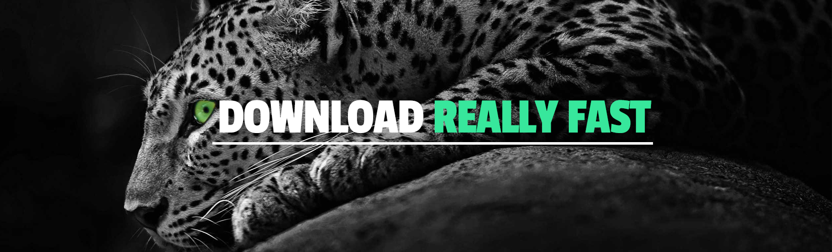 Download Everything as Premium Really Fast